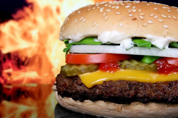"""""""Voedingsmiddelenindustrie verantwoordelijk stijging ziektes"""" 3"""