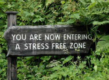 Stress kan slapende tumorcellen activeren 4