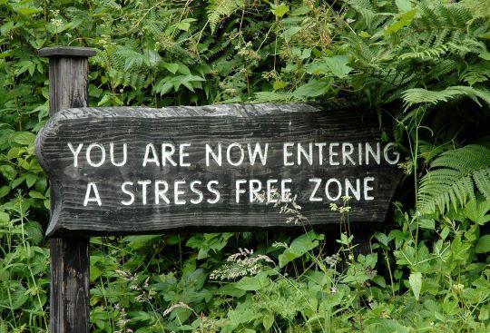 Stress kan slapende tumorcellen activeren 3