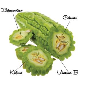 Bittermeloen 3