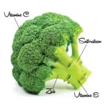 Voedingsmiddelen 38