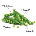 Voedingsmiddelen 61