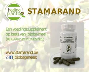 Healingplants 11