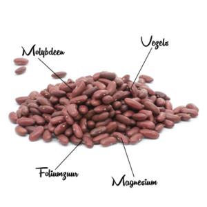 Kidneyboon 3