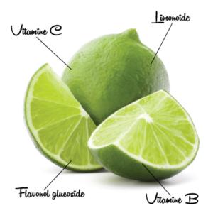 Limoen 3