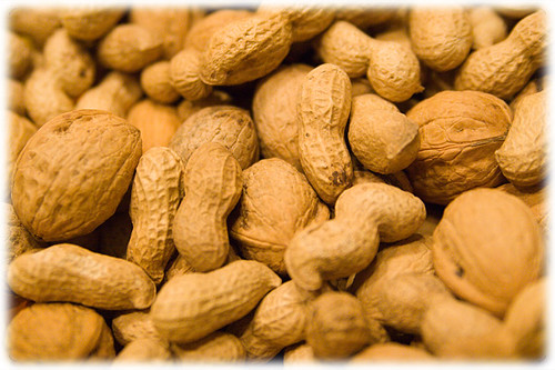 Pinda-allergie succesvol behandeld met pinda 3
