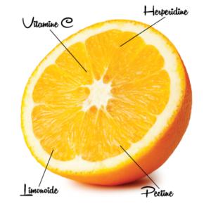 Sinaasappel 3