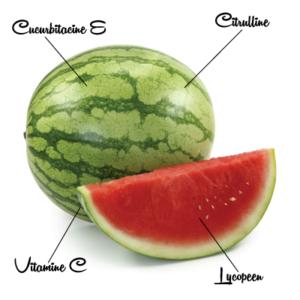 Watermeloen 3